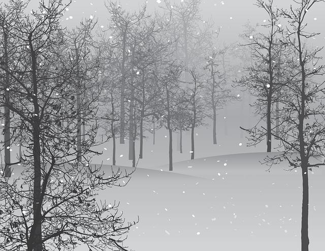 snow-1848346_640